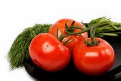 Свежие томаты на плите, изолированной на белизне. Стоковая Фотография