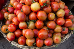 Свежие томаты на рынке Стоковые Фото