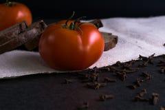 Свежие томаты, домодельный хлеб и гвоздичные деревья Стоковые Фото
