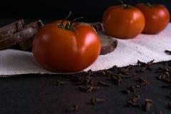 Свежие томаты, домодельный хлеб и гвоздичные деревья Стоковое фото RF