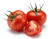 свежие томаты стоковые фото