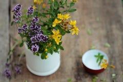 Свежие травы в миномете - нетрадиционной медицине Тимиан и tutsan Стоковая Фотография RF