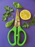 Свежие травы и лимон для здоровый, flavorful варить стоковое изображение rf