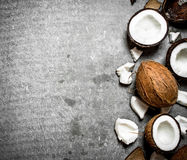 Свежие трудные кокосы Стоковое фото RF