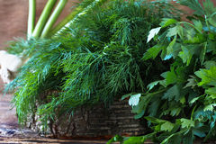 Свежие укроп и пук органической петрушки Стоковое Фото