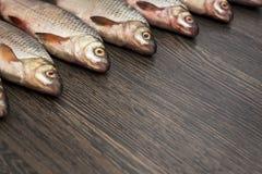 Свежие уловленные рыбы на древесине Предпосылка от большого количества рыб реки на деревянном стоковые изображения
