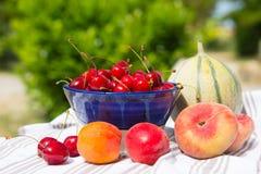 свежие фрукты ассортимента Стоковые Изображения