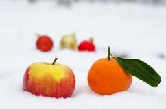 Свежие фрукты в сугробе Стоковые Фотографии RF