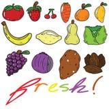 Свежие фрукты и мультфильм Veggies стоковые фото