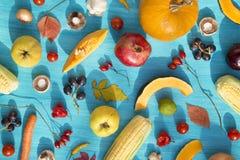 Свежие фрукты и овощи стоковые изображения