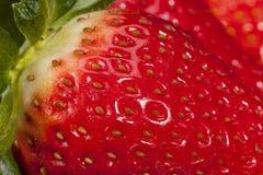 Свежие фрукты красной клубники, конца вверх Стоковые Изображения