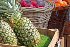 Свежие фрукты на рынке Стоковое Изображение RF