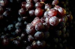 свежие фрукты Смешанная предпосылка плодоовощей 12-ого августа 2015 Стоковое Изображение