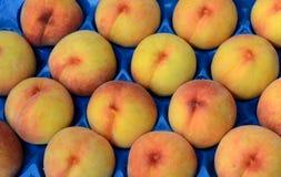 свежие фрукты Смешанная предпосылка плодоовощей 12-ого августа 2015 Стоковые Фото
