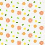 Свежие фрукты с листьями мяты Картина безшовно бесплатная иллюстрация