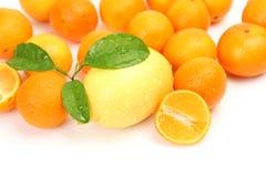 свежие фрукты Стоковые Изображения