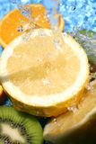 свежие фрукты Стоковая Фотография