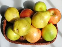 Свежие фрукты Стоковые Изображения RF