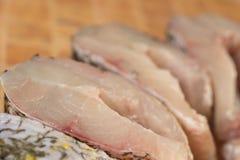 Свежие части рыб, щуки Стоковое Фото