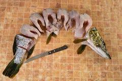 Свежие части рыб, щуки Стоковое фото RF