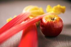 Свежие черенок яблока и ревеня для печь Стоковая Фотография