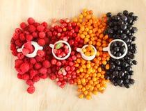 Свежие ягоды пущи - цветы природы Стоковое Изображение RF