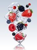 Свежие ягоды в падая кубах льда Стоковая Фотография