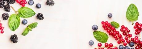 Свежие ягоды лета, угловые рамки на белой деревянной предпосылке, взгляд сверху, знамени для вебсайта