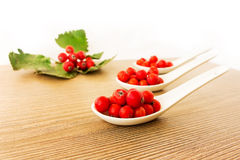 Свежие ягоды рябины в белых керамических ложках на деревянной предпосылке Стоковая Фотография