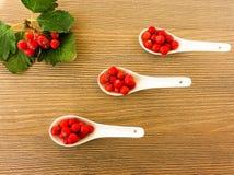 Свежие ягоды рябины в белых керамических ложках на деревянной предпосылке Стоковое Изображение RF