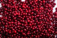 Свежие ягоды cornel на деревянном столе Стоковая Фотография