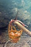Свежие яичка в одной корзине выдерживают в горячих источниках Стоковое Изображение