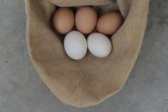 Свежие яичка куриц и яичка утки Стоковое Фото
