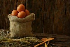 Свежие яичка на деревянной предпосылке от фермы и подготавливают для кашевара в комнате кухни, натуральных продуктах и очищают ед Стоковое Фото