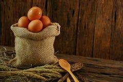 Свежие яичка на деревянной предпосылке от фермы и подготавливают для кашевара в комнате кухни, натуральных продуктах и очищают ед Стоковая Фотография RF