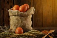 Свежие яичка на деревянной предпосылке от фермы и подготавливают для кашевара в комнате кухни, натуральных продуктах и очищают ед Стоковые Изображения RF
