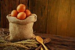 Свежие яичка на деревянной предпосылке от фермы и подготавливают для кашевара в комнате кухни, натуральных продуктах и очищают ед Стоковое Изображение RF