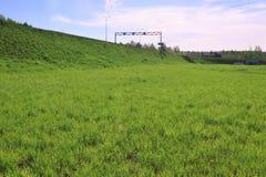 Свежие яркие ые-зелен лужайка и дорога на холме Стоковая Фотография RF
