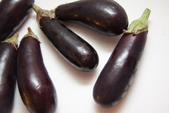 Свежие aubergines на белизне Стоковое Фото