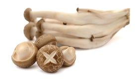 Свежие champignons в корзине на деревянной предпосылке стоковые фотографии rf