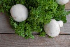 Свежие champignons и петрушка Стоковое Изображение