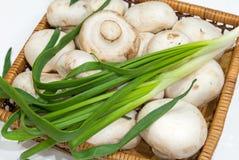 Свежие champignons с зелеными луками стоковые изображения