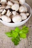 Свежие champignons с петрушкой в шаре Стоковое Фото
