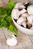 Свежие champignons с петрушкой в шаре Стоковые Изображения