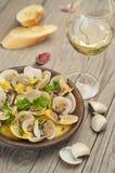 Свежие clams куколя (Венера, Meretrix) с соусом вина португальско стоковые фотографии rf