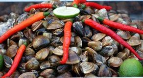 Свежие Clams с Chilies и известками Стоковое Изображение