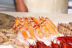 Свежие crayfish Стоковое фото RF