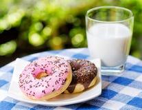 Свежие donuts и стекло молока на backgroun природы Стоковая Фотография RF