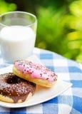 Свежие donuts и стекло молока на backgroun природы Стоковая Фотография