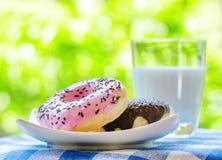 Свежие donuts и стекло молока на backgroun природы Стоковые Фотографии RF